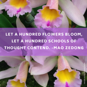 mao zedong, flowers, bloom, school of thought